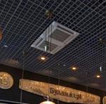 Использование ячеистых потолков взданиях аэровокзалов